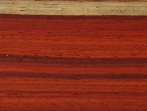 African Padauk Turning Blanks