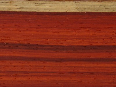 African Padauk Lumber Cormark International