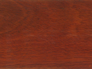 Bloodwood Thin Stock