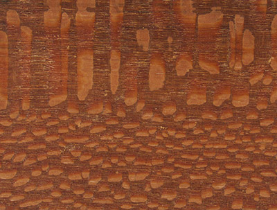 Leopardwood Knife Handles Cormark International