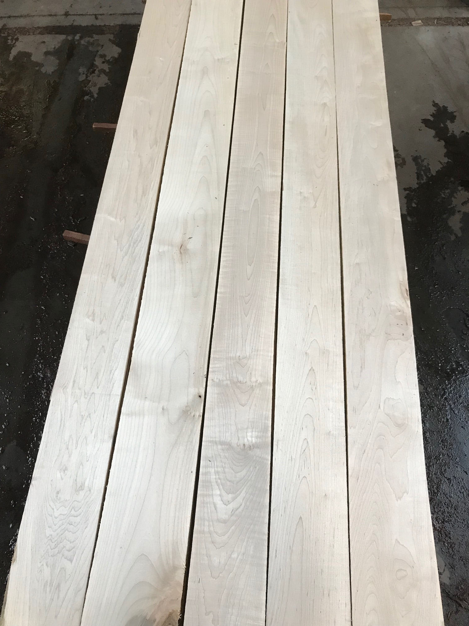 Hard Maple Blanks